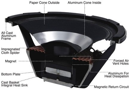 Speakers Anatomy