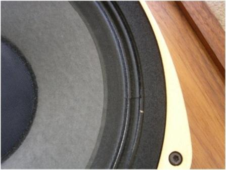 Tannoy SRM12B Close Up 2